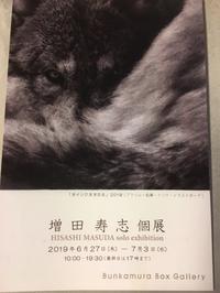 渋谷のBunkamura Box Galleryで6月27日から「増田寿志個展」が始まります。 - いぷしろんの空