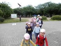 【南砂】芋の苗植え - ルーチェ保育園ブログ  ● ルーチェのこと ●
