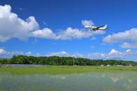 そら色・くも色・たんぼ色~旭川空港~ - 自由な空と雲と気まぐれと ~from 旭川空港~