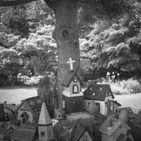 木陰の小さな教会 - Film&Gasoline