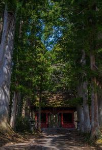 戸隠神社・奥社 - 鏡花水月