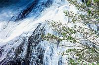 奥日光湯滝 2 - 光 塗人 の デジタル フォト グラフィック アート (DIGITAL PHOTOGRAPHIC ARTWORKS)