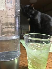 ぶくぶく - gin~tetsu~nosuke