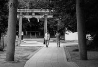 参道 - tonbeiのはいかい写真日記