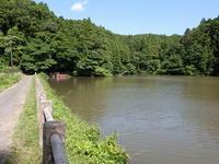 梅雨の晴れ間。発見も次々と、、 - 千葉県いすみ環境と文化のさとセンター