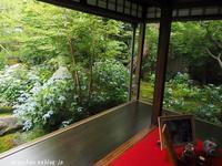 霊源院@京都の初夏 - アリスのトリップ2