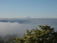 富士山、お色直し - 八ヶ岳 革 ときどき くるみ