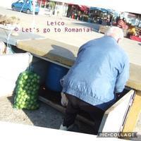 正解はピクルスでした! - ルーマニアへ行こう! Let's go to Romania !