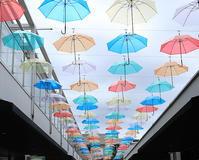 傘花の天井 - 風の吹くまま何でもシャッター