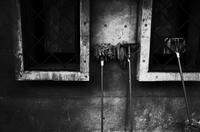 裏窓 - HTY photography club