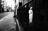 裏窓のマリア - HTY photography club