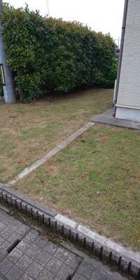お庭がきれいになりました - こうちゃんとやりたいことリスト