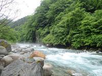 今週も蒲田川へ修行です♪ - Ugnakamura's Blog