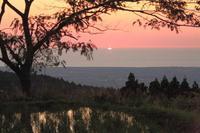 新レンズで「棚田の夕焼け」 - SWAN