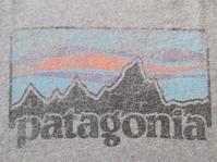パタゴニアのTシャツ・其ノ十二 - Questionable&MCCC