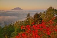 最新富士山の撮影記録 - やすらぎの富士