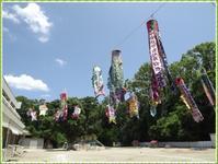 参観 - ひのくま幼稚園のブログ