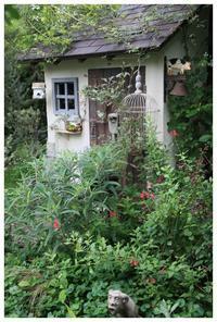 初夏のナチュガーデン - natu     * 素敵なナチュラルガーデンから~*     福岡で庭造り、外構工事(エクステリア)をしてます