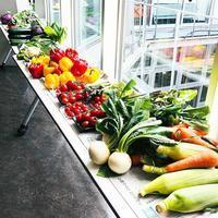 果物と野菜で 自分の感性を表現する - おもちゃ箱ぐらし 青森市 お花教室  ケイ・フルール