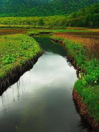 緩やか水の流れ静かなる尾瀬 - 風の香に誘われて 風景のふぉと缶