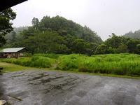 雨の日の手仕事、そして楽しみ方 - 千葉県いすみ環境と文化のさとセンター