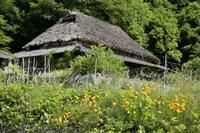 八塔寺ふるさと村 2岡山県 - ty4834 四季の写真Ⅱ