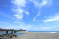 海を見ながら、アイスクリームを食べる~ - にゃお吉の高知競馬☆応援写真日記+α(高知の美味しいお店)