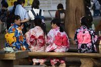 2019年北海道神宮例祭(さっぽろまつり)宵宮。凄い人並みです。 - ワイン好きの料理おたく 雑記帳