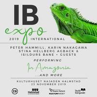 """In Amazonia"" 再演決定!IB EXPO11月25日、スウェーデン - ""Ex-ex"" Peter Hammill 日本語 情報ブログ"