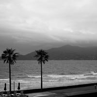 白黒写真#30 - 白黒写真