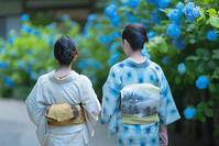 着物姿の女性と紫陽花北鎌倉明月院 - エーデルワイスPhoto