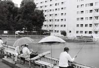 Filmカメラの誘惑 #4 富士フィルム Acros - Bronz Photo