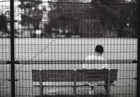 Filmカメラの誘惑 #5 Nokton58mm - Bronz Photo