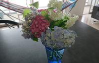今週のお花は…あじさい - 美的生活研究所