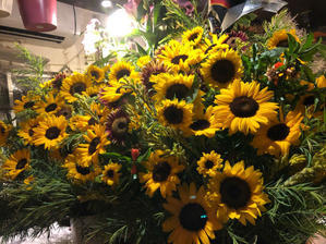 目黒区 都立大の 花屋  moco    花と 植物で楽しい毎日     一人で全力で営業中