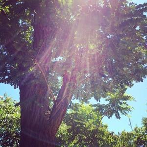 過去の話はしないというイベント😃 - soulfamily network