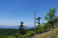 大台ヶ原山 - 自然と仲良くなれたらいいな2