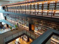 ランチを兼ねて図書館へ - blueletter