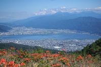 ★高ボッチ高原からレンゲツツジと諏訪湖と薄っすらと富士山2019 - へそまがり姫あっちこっち・エキサイト編