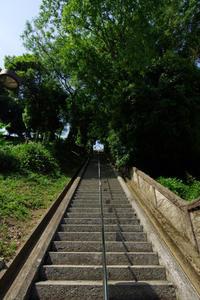 男山にて(2019/5/25)其の① - 南の気ままな写真日記