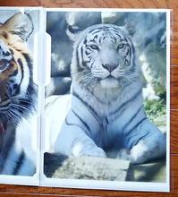 東武動物公園☆ホワイトタイガーのカーラさん♥クリアファイル - 青空に浮かぶ月を眺めながら