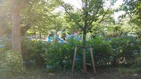 公園♪ - ピタットハウス方南町店 City Area株式会社BLOG
