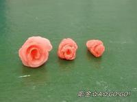 薔薇進化するの巻 - 号号日記