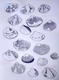 初の潮干狩り - たなかきょおこ-旅する絵描きの絵日記/Kyoko Tanaka Illustrated Diary