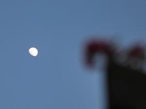 6/21 遠い遠い空の月 - 「あなたに似た花。」