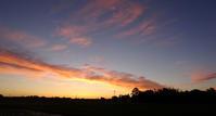朝焼け - 東金、折々の風景