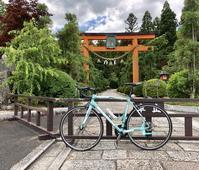霊山寺バラ園にサイクリング - 笑わせるなよ泣けるじゃないか2