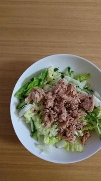 ツナと白菜deサラダ - trintrin☆dolce☆