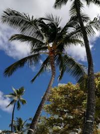 ドリームの旅*ハワイ*オアフにて~2~ - 十色生活
