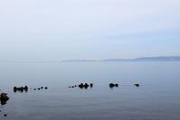 6月の海岸 - hanako photograph